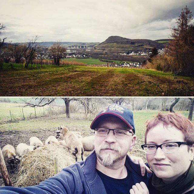 Auf dem Mühlenberg