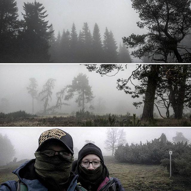 Der Bergheidenweg im Nebel